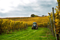 Tractor in the Vineyard Royalty Free Stock Image