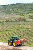 Tractor in the Vineyard Stock Photo