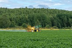 Yellow tractor watering a green potato field royalty free stock photos