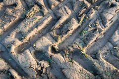 Tractor wheel tracks in clay ground Royalty Free Stock Photos