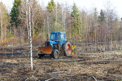 Tractor work the land among the trees Royalty Free Stock Images
