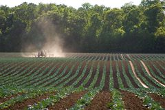 Tractor working field