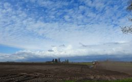 Tractor working in field windy day, Lithuania Stock Photography