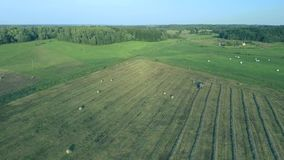 Tractor working in fields aerial view stock video