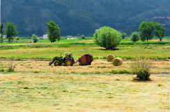 Tractor working hay. Tractor in a field creating hay barrels Stock Images