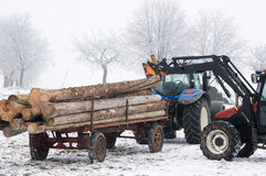 Tractor working with Tree Trunks. In Winter Stock Photos