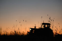 Tractor works on field Royalty Free Stock Photo