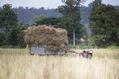 Tractor y transporte fotos de archivo libres de regalías