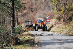 Tractors Clearing Rime Damaged Trees Stock Image
