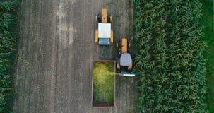 Tractors during corn harvest. Drone flight over tractors during corn harvest stock video footage