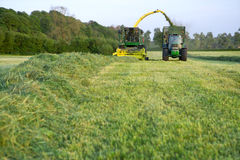 Tractors Cutting Silage And Filling Trailer In Field Stock Photography