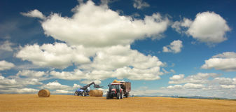 Tractors at harvest and beautiful landscape Stock Images