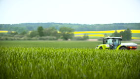 Tractors sprayed with fertilizer. Tractors scatters fertilizer on the wheat field stock video