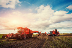Tractors working in the field. Carpathians. Ukraine Europe Royalty Free Stock Photos