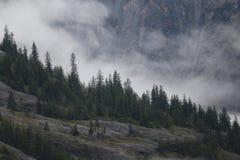 Tracy Arm Fjord Images libres de droits