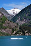 In the Tracy Arm Fjord Alaska Royalty Free Stock Image