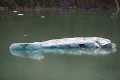 Tracy Arm Fjord Royalty Free Stock Photo
