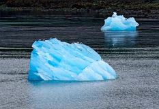 Tracy Arm Fjord Iceberg Royalty Free Stock Image