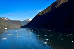 Tracy Arm Fjord with icebergs stock photography