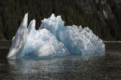 Tracy Arm Iceberg Royaltyfri Foto
