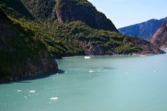 tracy de fjord de bras Images stock