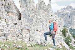 Trad klättringkugghjulkugge royaltyfri bild
