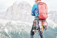 Trad klättringkugghjulkugge royaltyfri fotografi