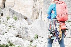 Trad klättringkugghjulkugge arkivbilder