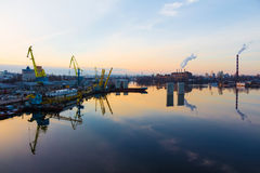 Trade dock cranes Royalty Free Stock Photos
