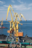 Trade port and cranes Royalty Free Stock Photography
