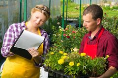 Trade workers keep records of sold plants Stock Photos