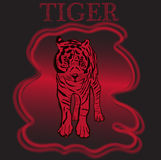 Trademark with tiger. Typography design for t-shirts. Royalty Free Stock Photography