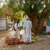 Trader and buyer with white caftans and simple turbans under a big tree at the market trading tomatoes. Dongola, Sudan, February 7., 2019: Trader and buyer with stock photo