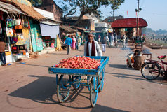 Trader of the carrots walking down the sunny street in India Royalty Free Stock Images