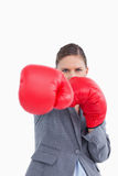 Tradeswoman with boxing gloves attacking Stock Photography