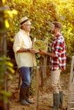 Tradición de la familia del viñedo - padre feliz e hijo que miran el grap imágenes de archivo libres de regalías