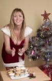 Tradicional pique las empanadas y el azúcar de formación de hielo en la Navidad Imagenes de archivo