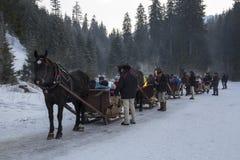 Tradicionalmente passeio do trenó nas montanhas polonesas Imagem de Stock