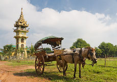 Tradiitional burmese horse cart with wooden wheels Stock Image