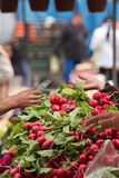 Trading on green market Royalty Free Stock Photography