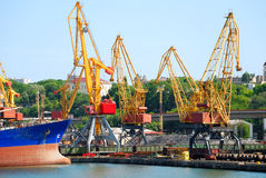 The trading seaport with cranes, cargoes and ship Royalty Free Stock Photography