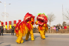 Traditioal Chinese lion dancing Stock Images
