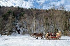 Tradition d'horaire d'hiver de la Transylvanie avec le traîneau traditionnel images stock