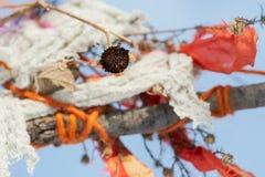 Tradition de natif américain Bénédiction des arbres Liens de prière dans la forêt image stock