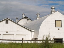 Tradition farm barns in white. Stock Images