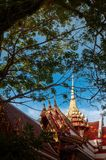 Tradition grande d'artisan d'or des branches d'arbre vues par temple de Wat Pha Kho Songkhla - la Thaïlande images libres de droits