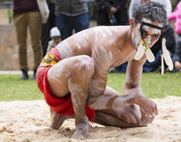 Traditional aboriginal dancer, NADOC, Sydney 2017 Royalty Free Stock Images