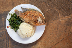 Traditional african food - ugali, fish and greens. Traditional East African food - ugali, fish and greens in Kenya royalty free stock image