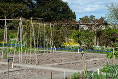 Traditional allotment Royalty Free Stock Photography