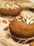 Traditional almond muffins cupcake Stock Images